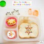 Bento Birthday School Lunch Ideas and Sprinkle Sandwich