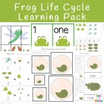 Frog Life Cycle Learning Pack