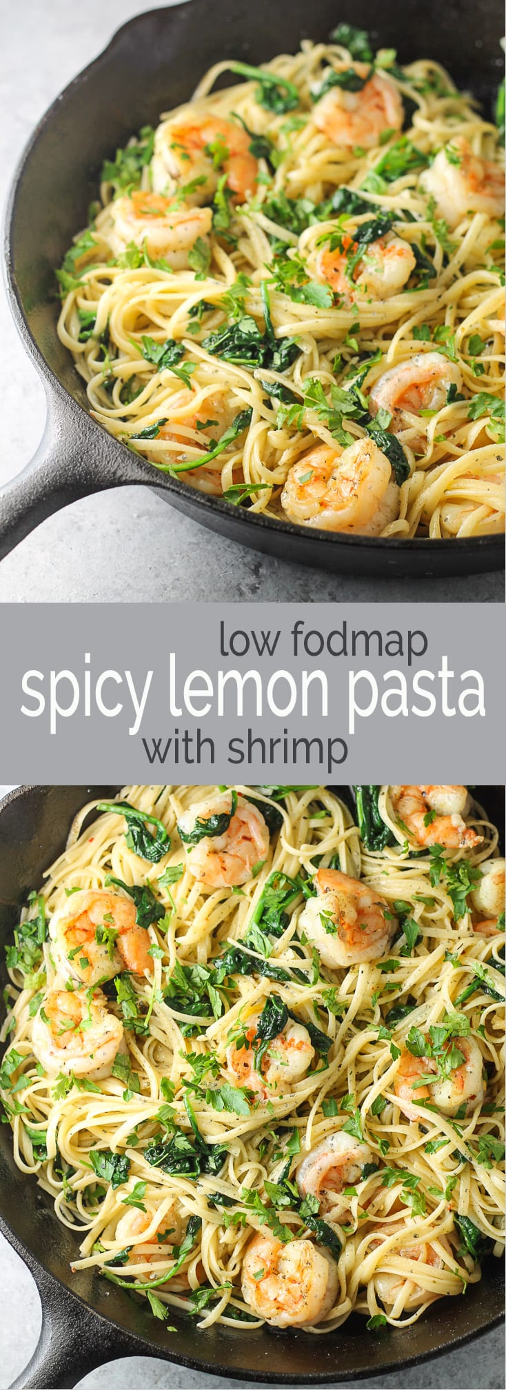 Whether it's for an easy weeknight meal or simple stay-at-home date night supper, this Low Fodmap Spicy Lemon Pasta with Shrimp recipe is AH-mazing! And, it's gluten free!!