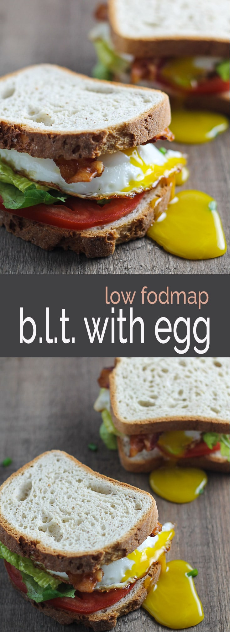 Need a quick and easy meal? This low fodmap BLT with egg is your ticket! Delicious and gluten free, this sandwich is one of my go-to's, anytime of the day!