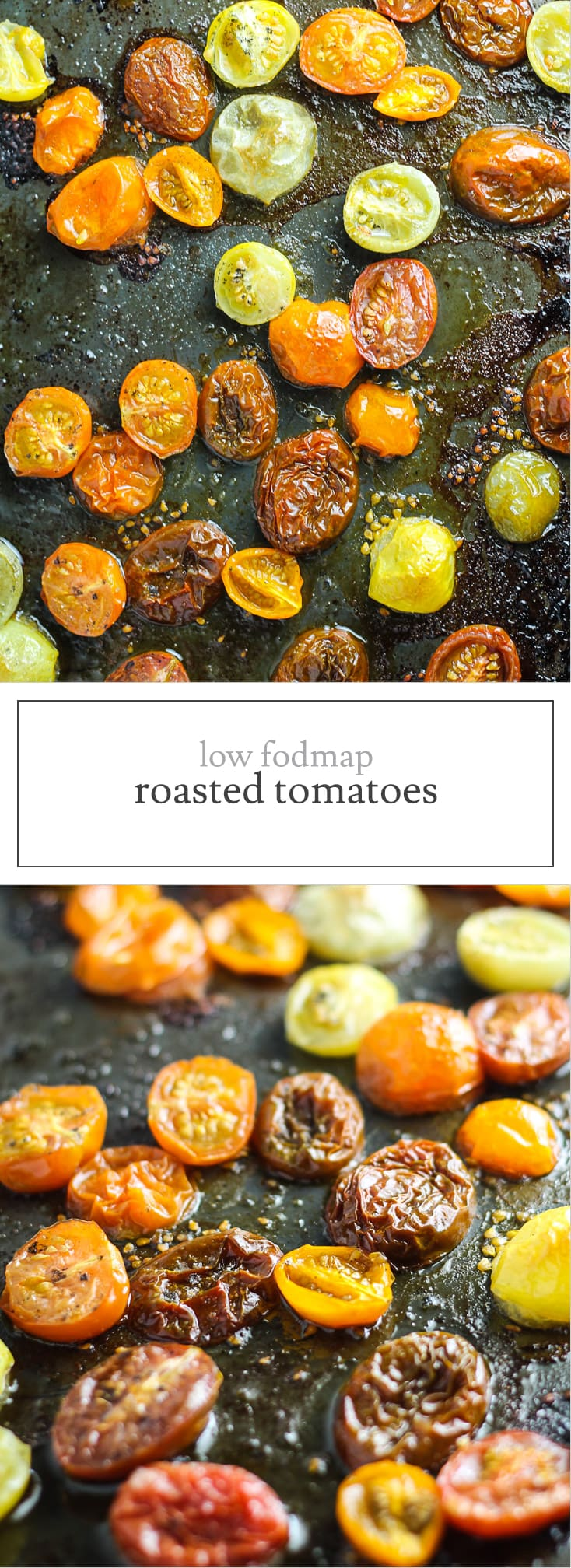 Add a boost of umami to pasta and pizza with these easy, Low FODMAP Roasted Tomatoes. Just three simple ingredients - cherry tomatoes, garlic olive oil and sea salt!