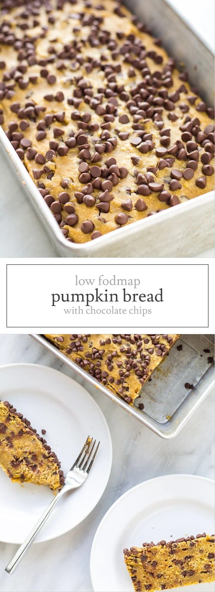 Filled with fall flavors and topped with chocolate, this Low FODMAP Pumpkin Bread with Chocolate Chips is perfect for a gluten free breakfast or sweet treat!