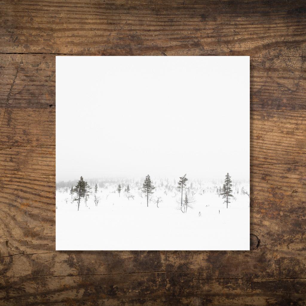 Isacco Emiliani | White Finland