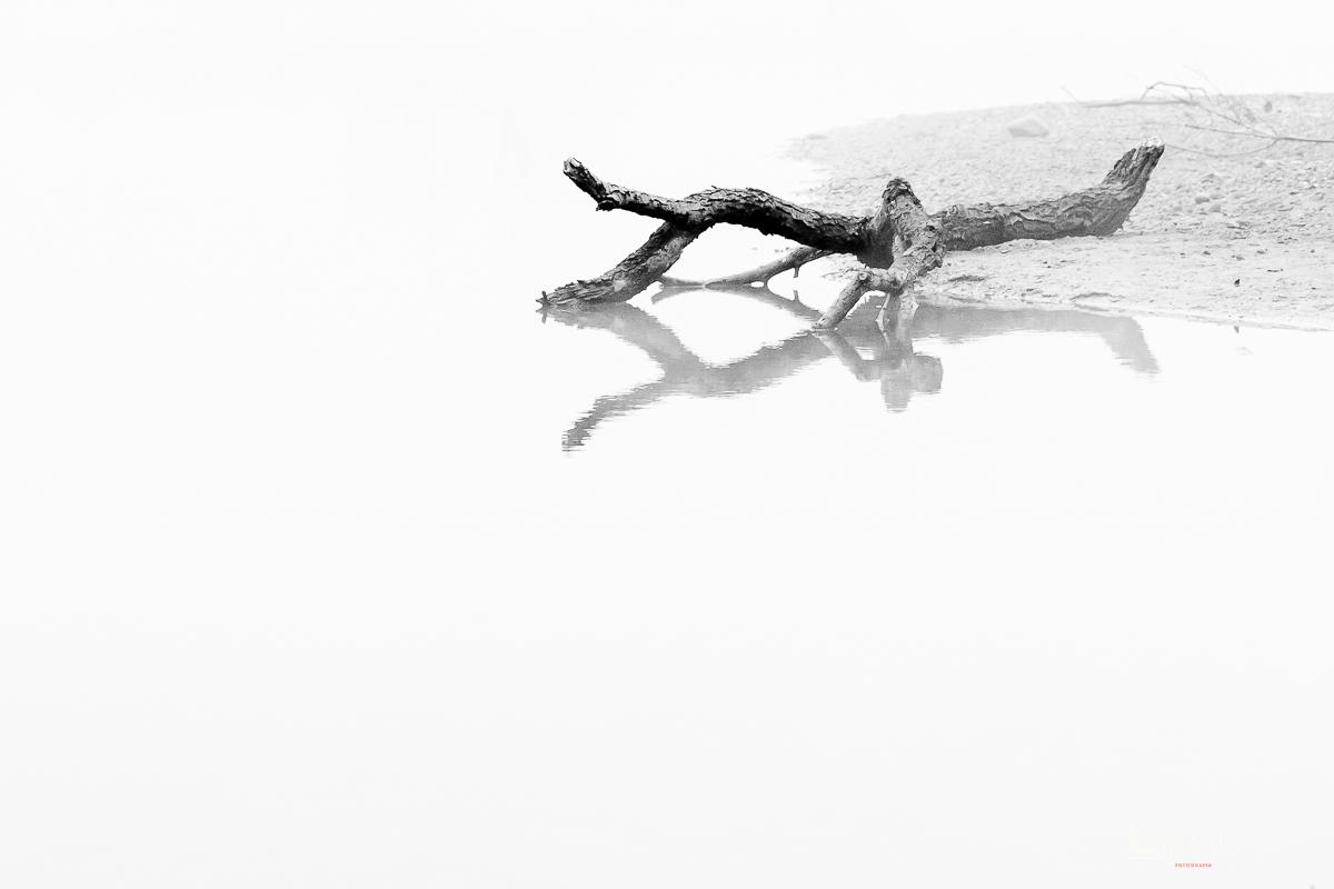 Accenno di paesaggio ©FuoriFuoco.it