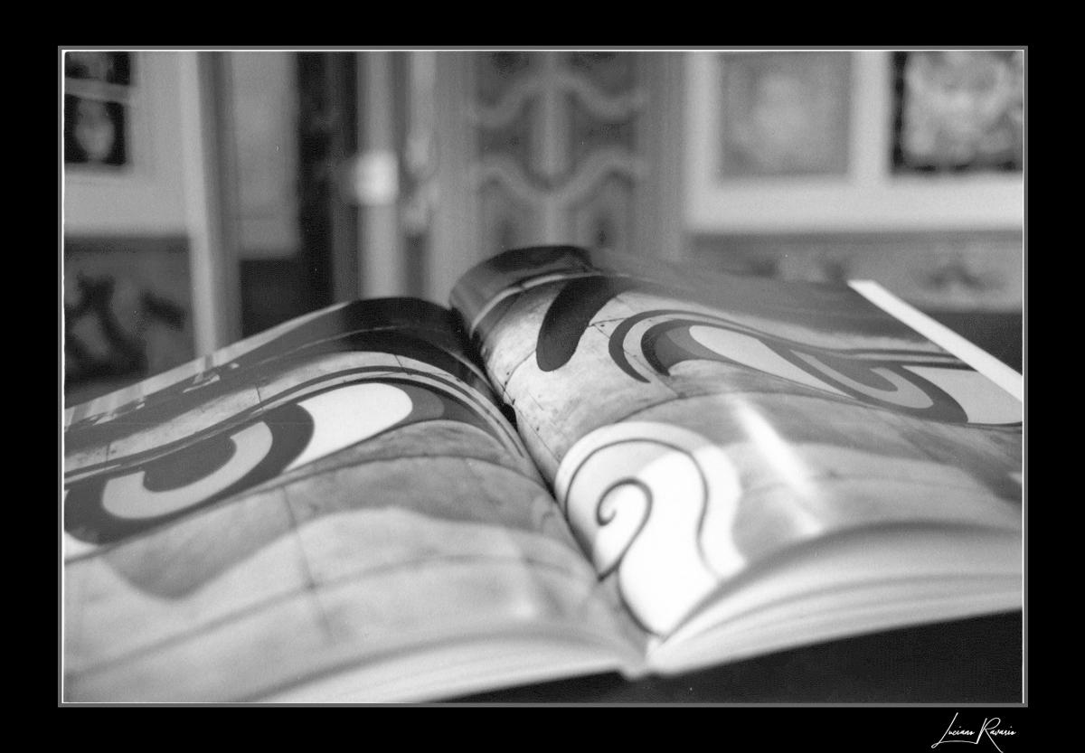 """Merate """"1 di 365""""©FuoriFuoco.it"""