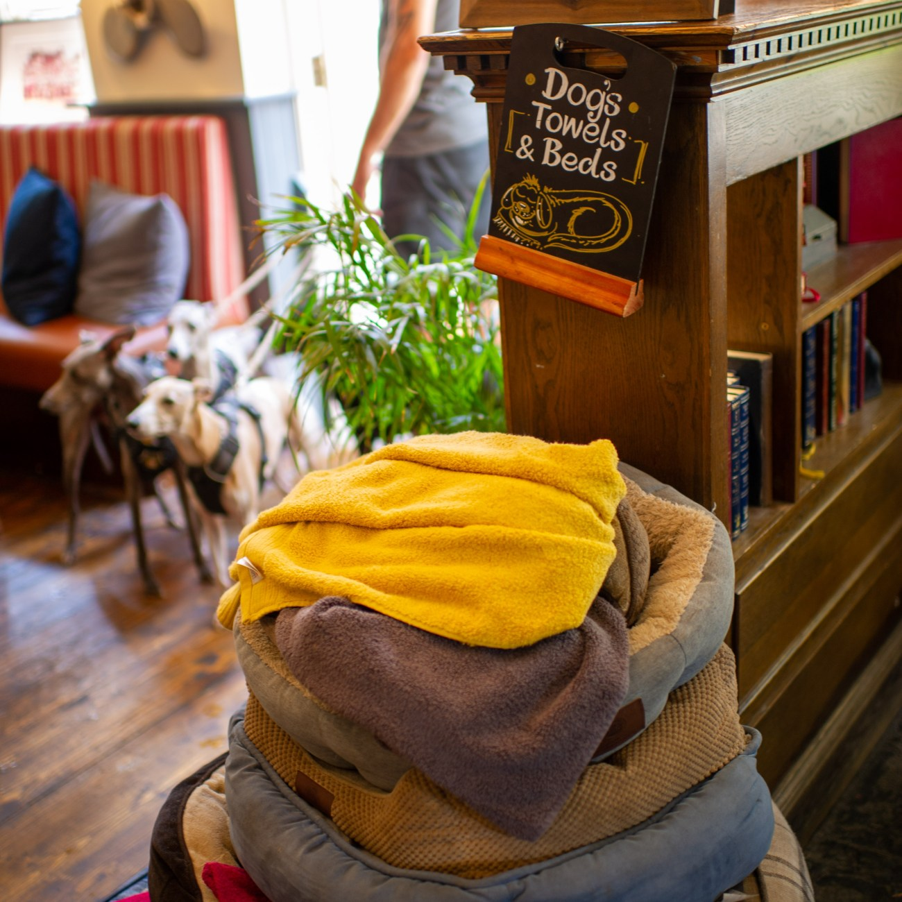 Stack of dog beds & towels at Guildford dog friendly pub.