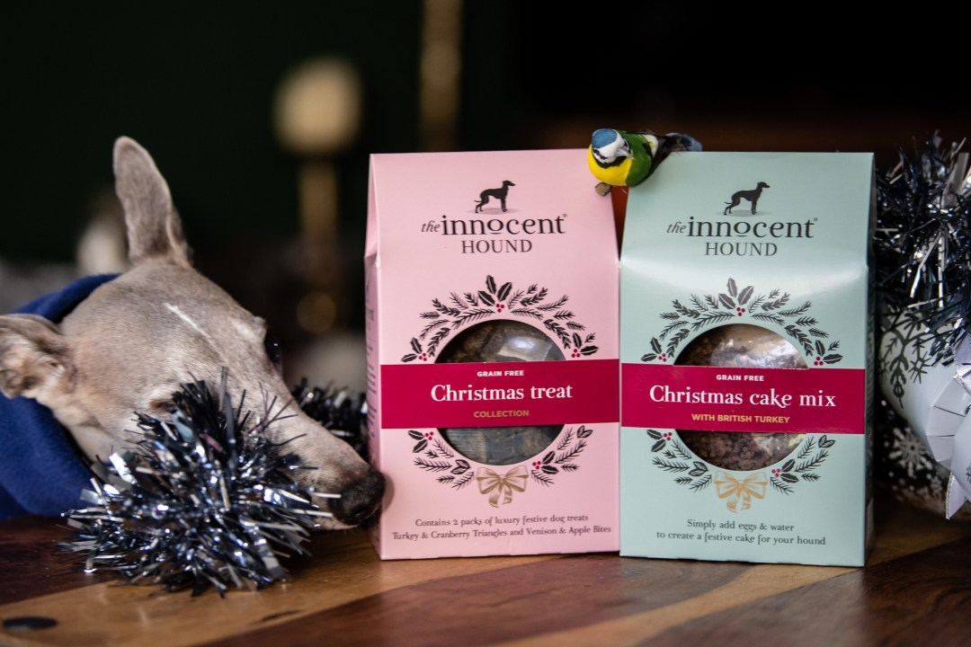 two boxes of natural dog treats by the innocent hound