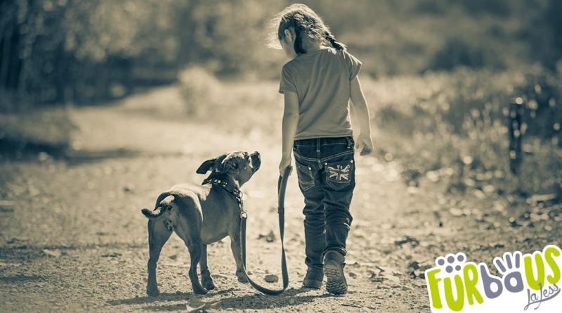 banner relazione con il cane