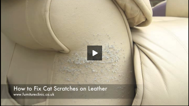 how to repair a leather sofa from cat scratches sears sofas clearance on furniture clinic
