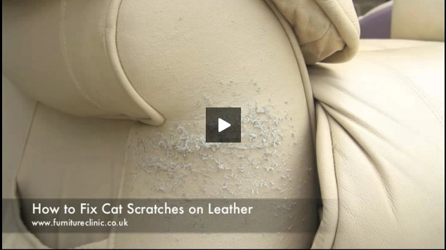 how to repair a leather sofa from cat scratches small scale queen sleeper tear in - furniture clinic