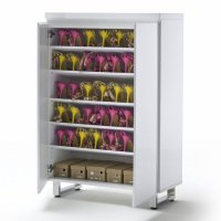 Buy cheap Shoe storage cabinet