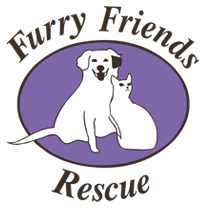 Furry Friends Rescue Blog