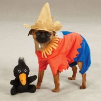 Scarecrow Dog Costume - Furrypartners