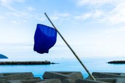 海の青と、空の青と、のぼりの青。