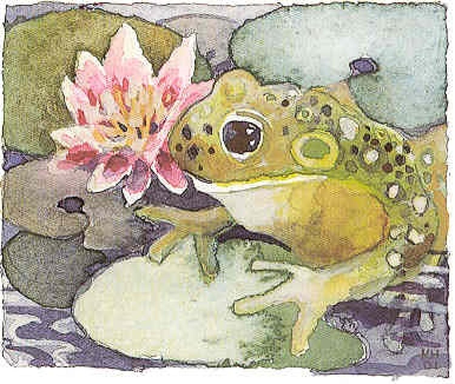 Frog Amp Lilypad In All Small Cards