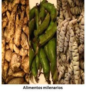 Alimentos Milenarios