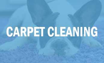 Carpet Cleaning in Destin, Fl