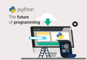Why Python is Future of Programming Language for Biggies like Google, Facebook?