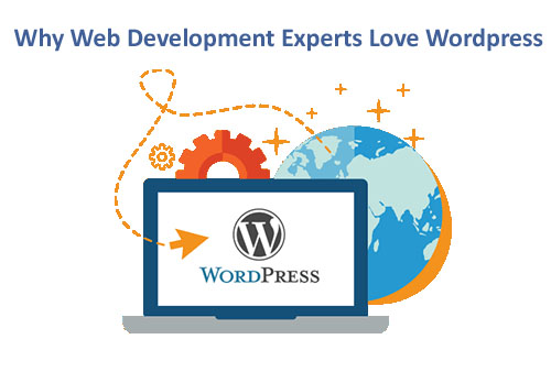 Top Reasons Why Web Development Experts Love WordPress