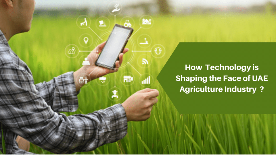 How Technology Is Shaping the Face of UAE Agriculture Industry