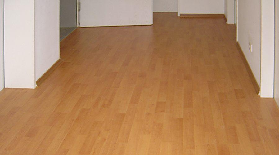 Neue Bodenbelge Zimmer Wohnung Im Zentrum Von Gattikon