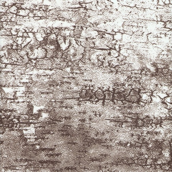 Birch Bark 22'' Bolster Pillow Set