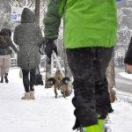 Maltempo: fine settimana all'insegna del gelo siberiano