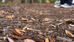 mozziconi-di-sigaretta-a-terra-multe-fino-a-1000e-630x355