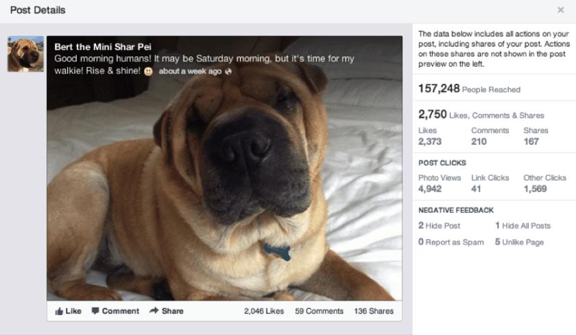 Facebook Seitenstatistiken - Werte zu einzelnen Beiträgen