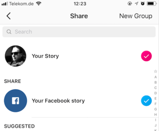Instagram Stories & Facebook Stories Cross Postings