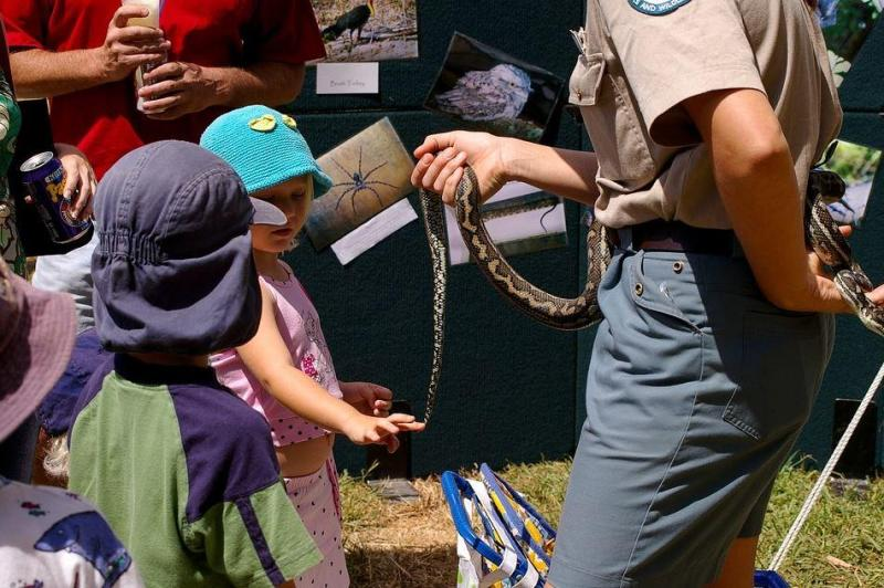 How To Avoid a Snake Encounter