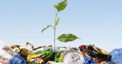 Waste-To-Energy (WTE) Technologies: A Sustainable Waste Management Solution