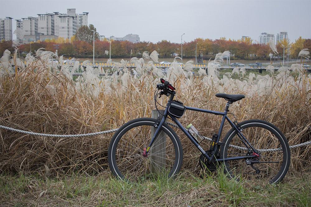 best hybrid bike under 1000