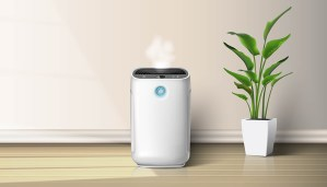 1 best air purifier - Home FH