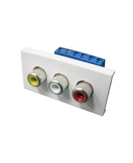 Audio Visual Modules