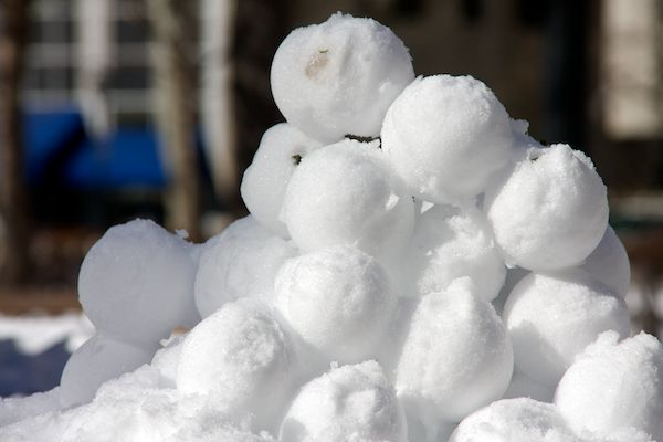 Image result for snowballs