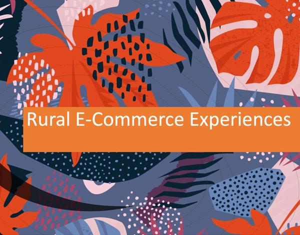 Rural_E-Commerce_Experiences