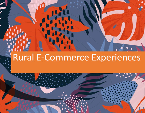 Rural E-Commerce Experiences