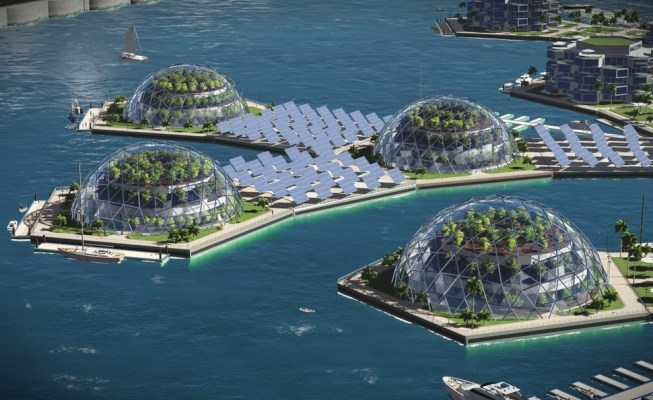 Image result for float island 2020