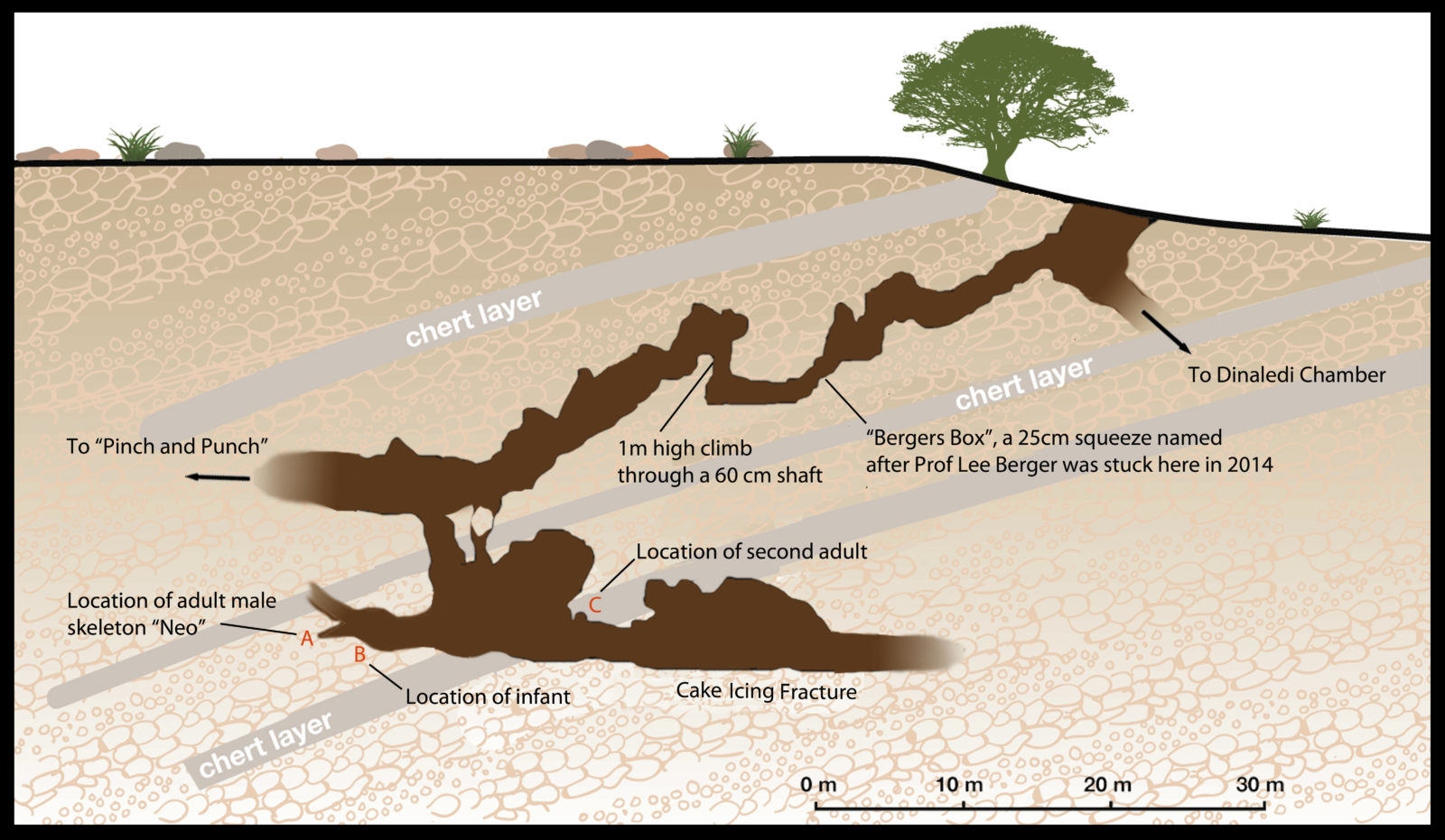 hight resolution of lesedi chamber cave map