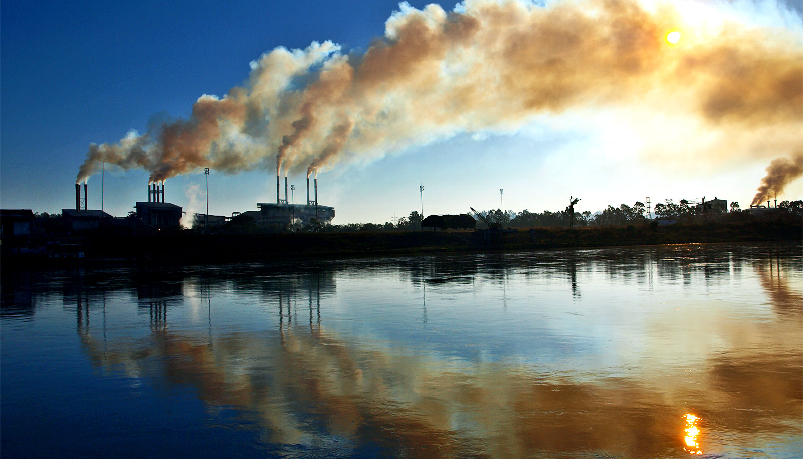 Air Pollution Causes Birth Defects And Fetal In Rats