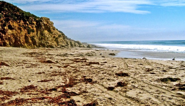 The image shows the beach at Leo Carillo State Park, which acts as a reference beach. (beaches concept)