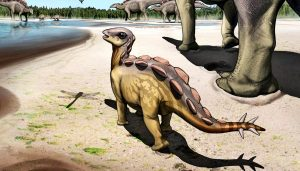 The smallest imprint of a stegosaurus ever came from a cat-sized dune