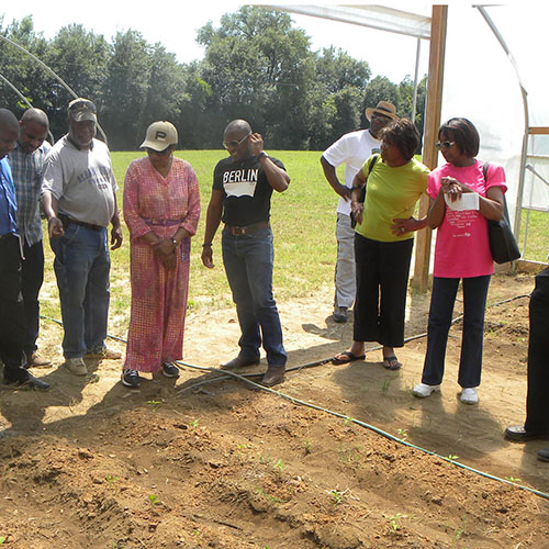 County agent shares agriculture production practices with members of an exchange program