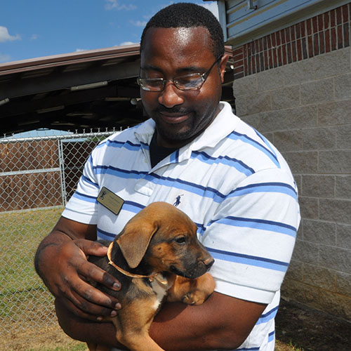 FVSU SAFE Center provides shelter for puppies headed to Colorado