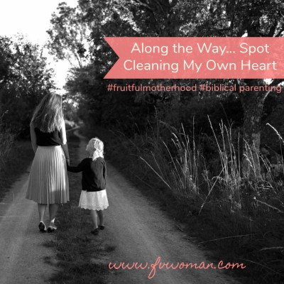 Along the Way… Spot Cleaning My Own Heart