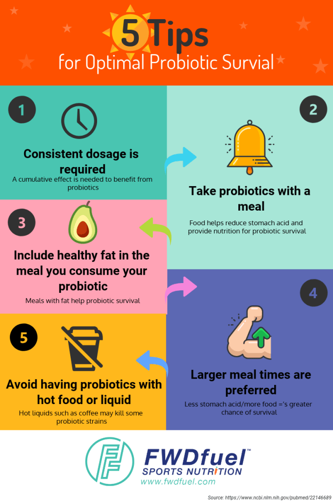 Infographic showing top 5 tips for optimal probiotic surval: consistent dosage, take probiotics with a meal, include healthy fats in the meal, take them at larger meal times, and avoid having probiotics with hot food or liquid