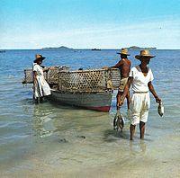 漁師(平均所得235万円)が50年で7割減。金持ちだと思ってたのに思いの外、稼げない業種なんだな。