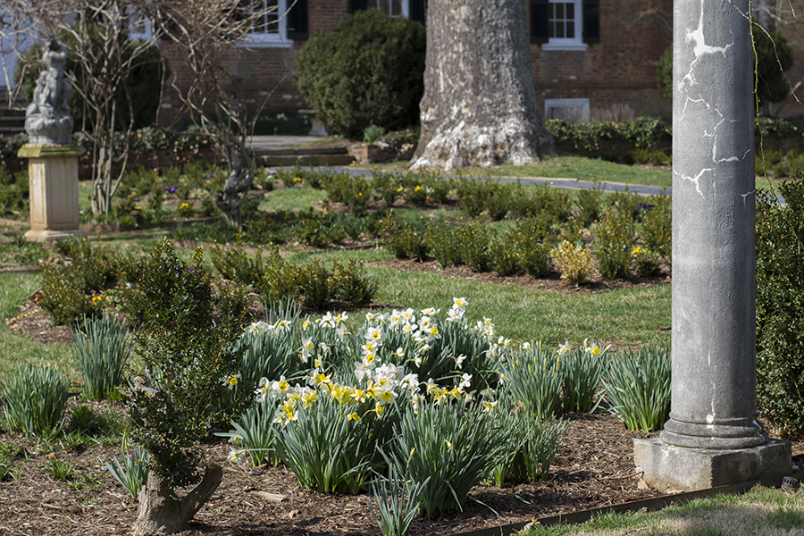 Chatham Manor in the Spring