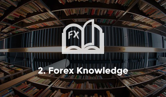 Basics First An Introduction to Forex Signals